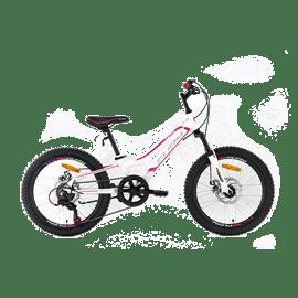 """אופני ילדים 20"""" 40217 די"""