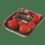 עגבניה דורה ארוז