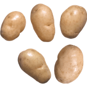 תפוח אדמה לבן