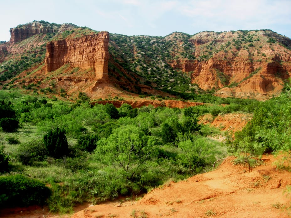 Weathered desert mesas with red and yellow soil and green desert plants