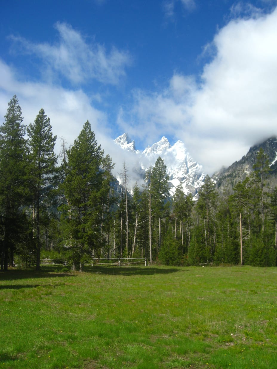 Mountains with very green meadow in foreground