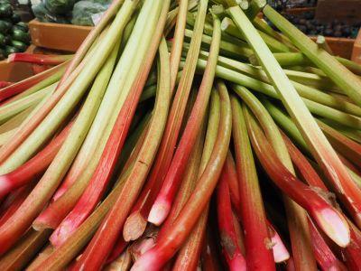 Fresh Rhubarb at the Farm Stand