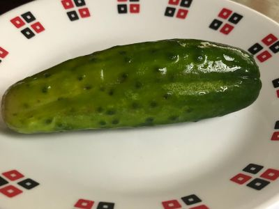 Pickle After 1 Week, So Good