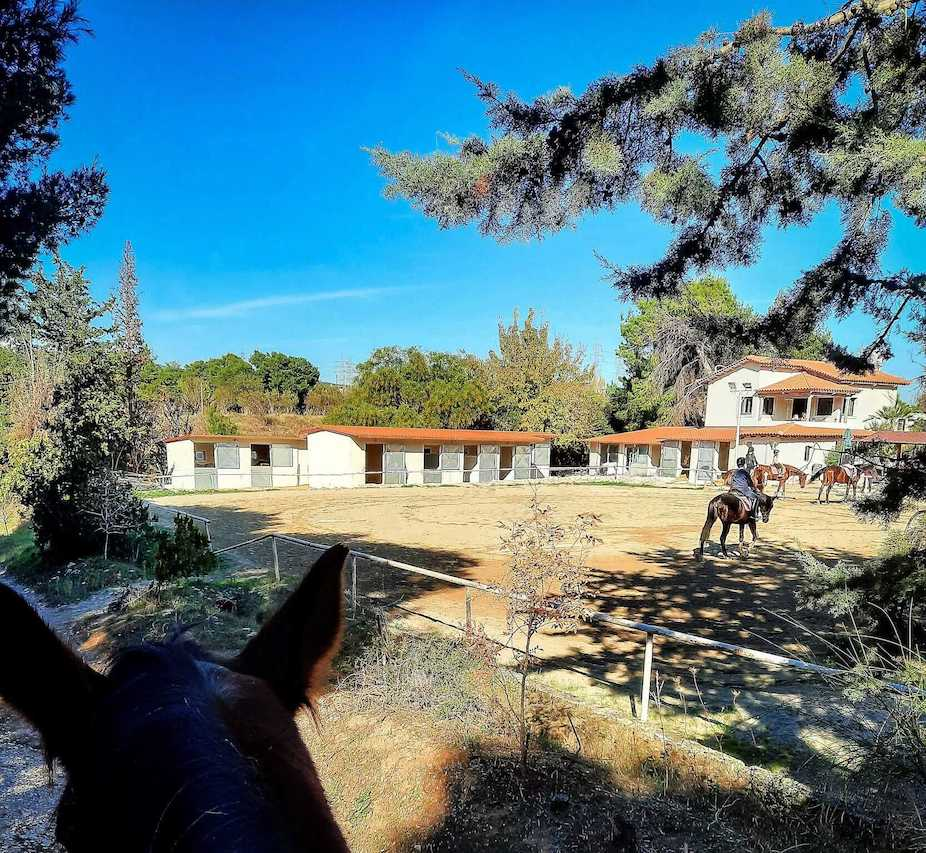 Σχολή ιππασίας Εκάλης στην Άνοιξη