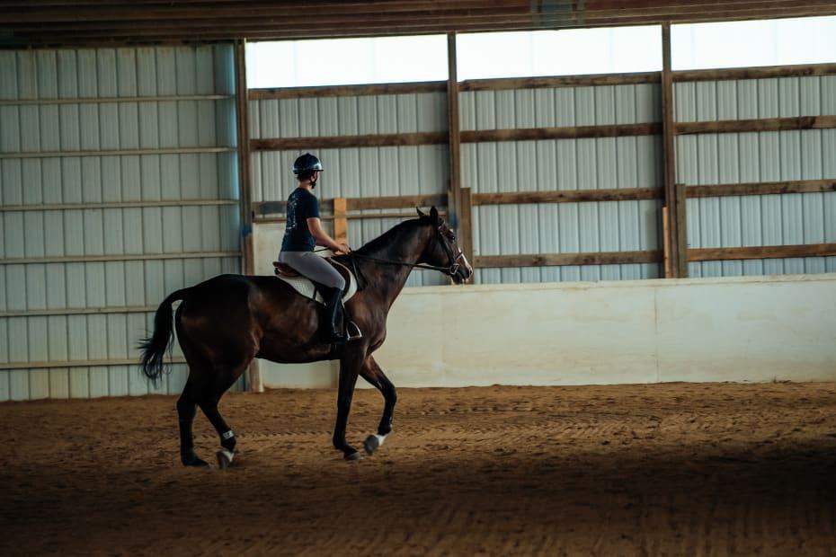 Αναβάτης πάνω σε καφέ άλογο στην σχολή ιππασίας Εκάλης