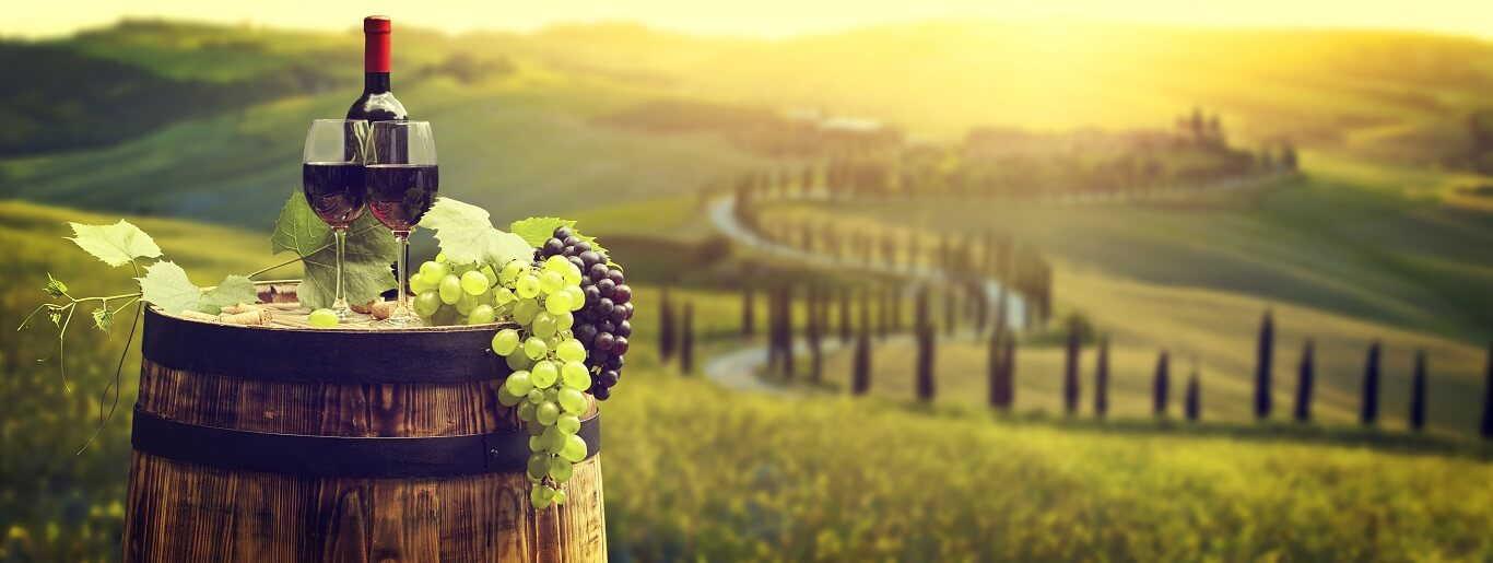 Toscana Tours
