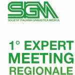 1° EXPERT MEETING REGIONALE
