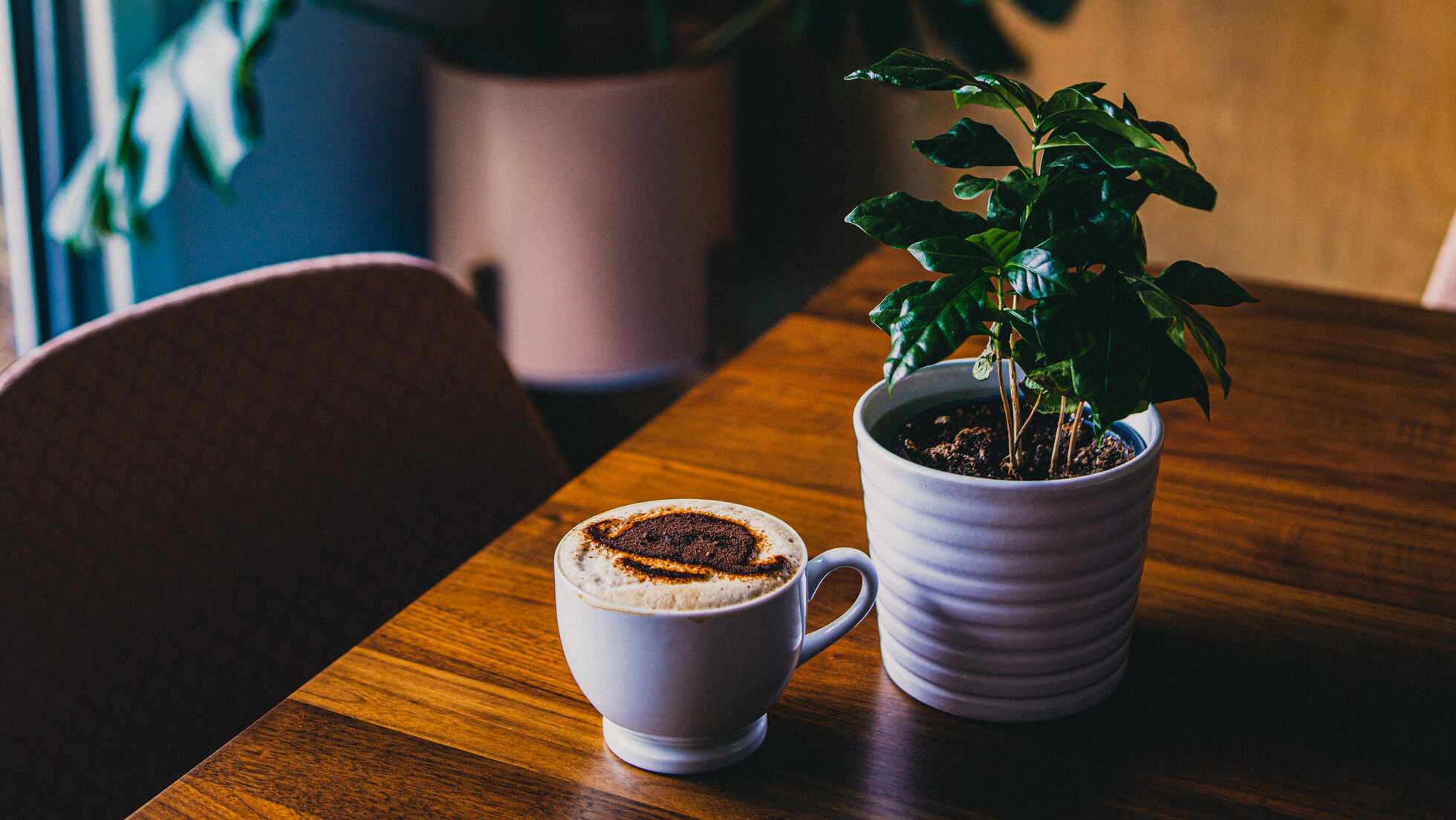 Image of latte with SIGMADESIGN Logo and Coffee Plant - it's a 404 error page