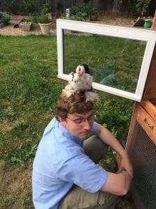 Douglas Burnette Chicken