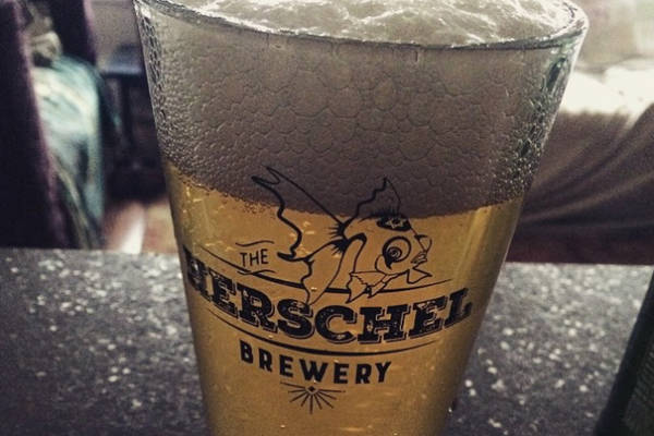 Herschel the Goldfish Pint Glass