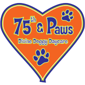 75th & Paws Doggy Daycare, New York, , NY