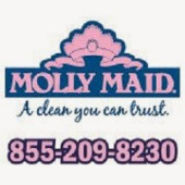 Molly Maid - West Atlanta, Douglasville, , GA
