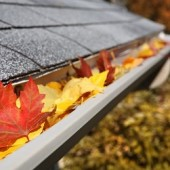 Leaf Relief Gutter Cleaning