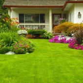 Independent Lawn Service