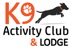 K9 Activity Club, Santa Rosa, , CA
