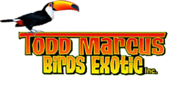 Todd Marcus Birds Exotic, Delran, , NJ
