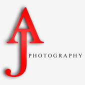 AJ Photography, Oak Park, , MI