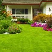 MJ Landscaping & Irrigation