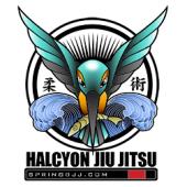 Halcyon Jiu Jitsu, Spring, , TX