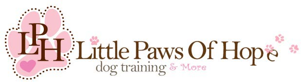 LittlePawsOfHope Dog Training, Daycare, Lodging, & Spa, Westbury, , NY