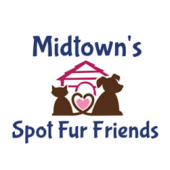 Midtown's Spot Fur Friends, Houston, , TX