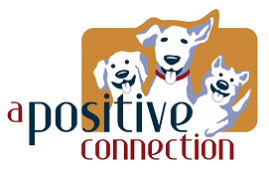 A Positive Connection Dog Training