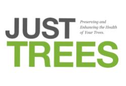 Just Trees, Austin, , TX