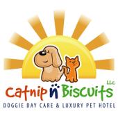 Catnip-n-Biscuits, Savannah, , GA