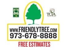 Friendly Tree Service