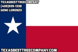 Texas Best Tree Company, LLC