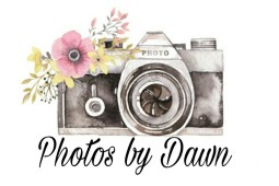 Photos by Dawn