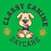 Classy Canine Daycare, Dallas, , TX
