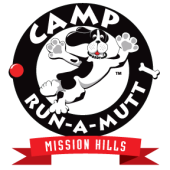 Camp Run-A-Mutt - Mission Hills, San Diego, , CA
