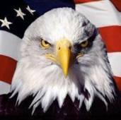 American Veterans Roofing