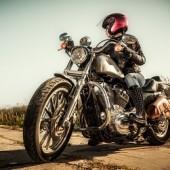 Rider's Choice Training, Holiday, , FL