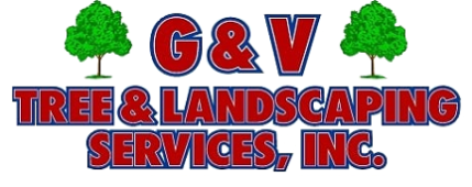 G&V Tree  & Landscaping Services, Inc., Springfield, , VA