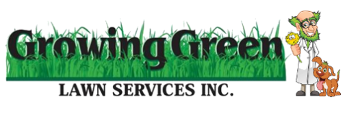 Growing Green Lawn Solutions