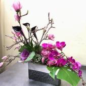 Orchid Florist, Berkeley, , CA