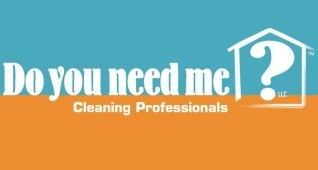 Do You Need Me? Cleaning Professionals