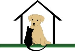 Stay At Home Pet Services, LLC, Cincinnati, , OH