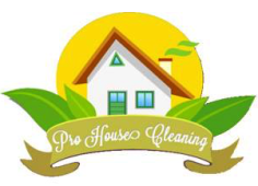 Pro House Cleaning