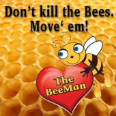 The Beeman Live Bee Removal