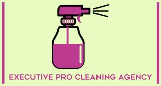 Executive Pro Cleaning Agency, Plattsburgh, , NY