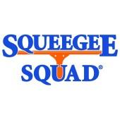 Squeegee Squad of Cape Girardeau, Cape Girardeau, , MO