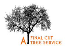 A Final Cut Tree Service