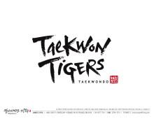 Taekwon Tigers Palo Alto, Palo Alto, , CA