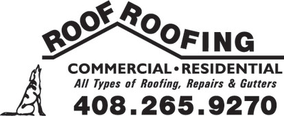 Roof Roofing