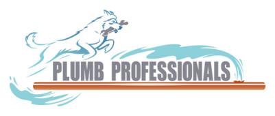 Plumb Professionals, Ashburn, , VA