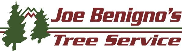 Joe Benigno's Tree Service, Gardnerville, , NV