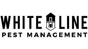 White Line Pest Management, Roseville, , CA